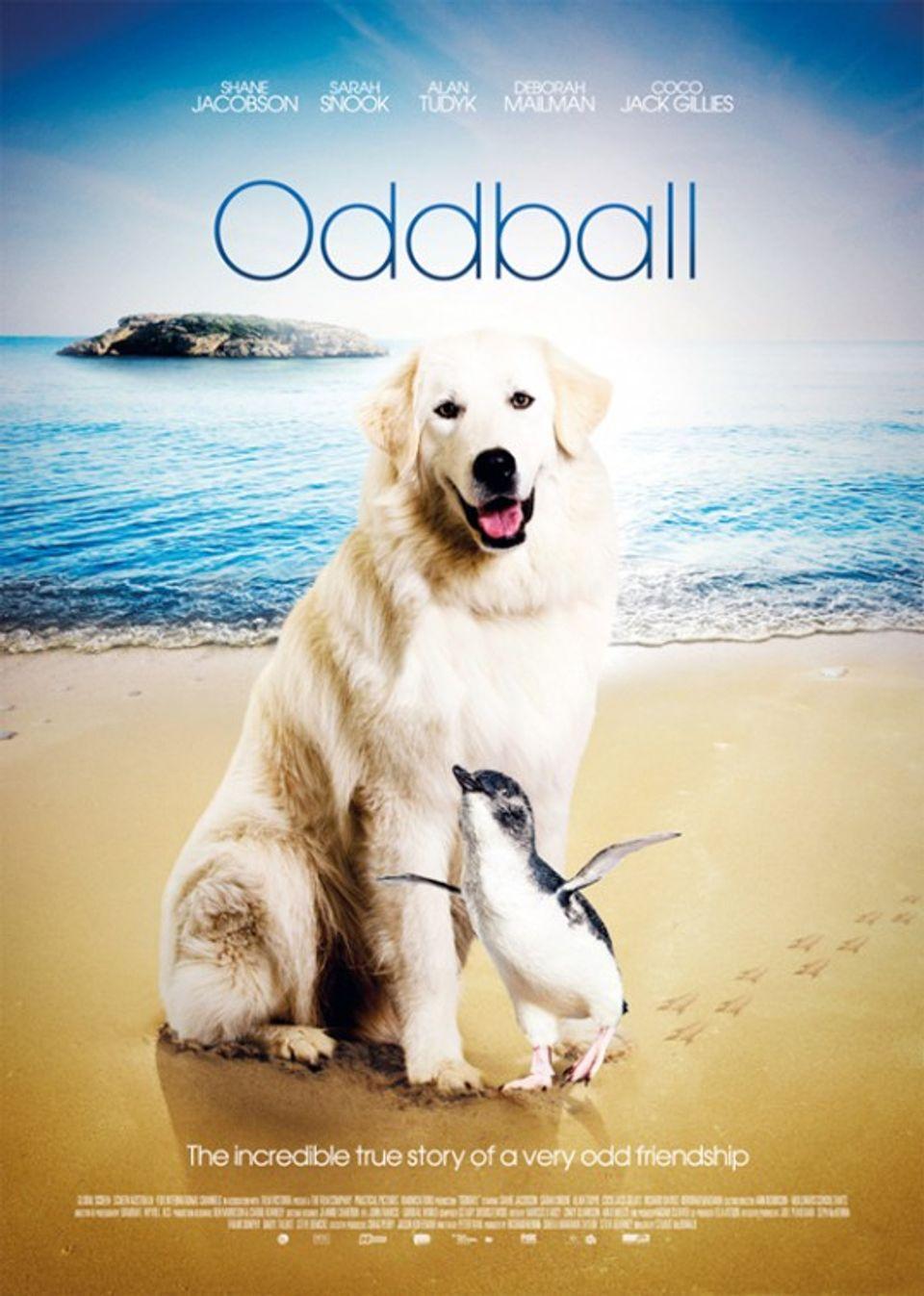 """ภ.ฝรั่ง """"อ็อดบอล ตูบขาวผู้พิทักษ์"""" (ODDBALL)"""