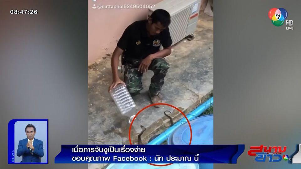 ภาพเป็นข่าว : แค่มีขวดพลาสติก ทำให้การจับงูเป็นเรื่องง่ายนิดเดียว!