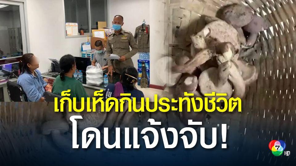 3 ชาวบ้านเก็บเห็ดประทังชีวิต ถูก หน.หน่วยราชการแจ้งจับ