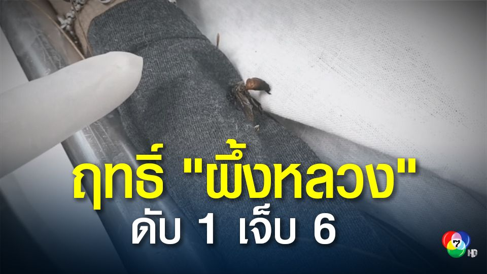 คนงานกรมชลประทาน โดนผึ้งหลวงรุมต่อย ดับ 1 เจ็บ 6