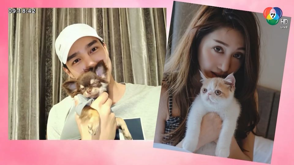 ส่องมุมน่ารักๆ ของ พิม พิมประภา - บูม กิตตน์ก้อง ทาสน้องหมาน้องแมว : สนามข่าวบันเทิง