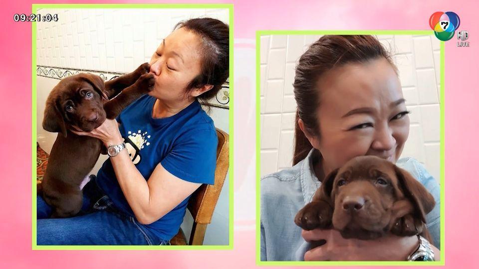 เจนนิเฟอร์ คิ้ม เผยความน่ารักของน้องหมาคู่ใจ ข้าวเม่า-ข้าวปั้น : สนามข่าวบันเทิง