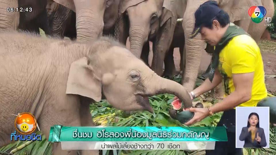 ชื่นชม ฮีโรสองพี่น้องมูลนิธิร่วมกตัญญู นำผลไม้เลี้ยงช้างกว่า 70 เชือก