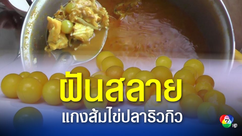 สาวช็อก ซื้อไข่ปลาริวกิวทำแกงส้มกลับได้ไข่ปลาปลอม