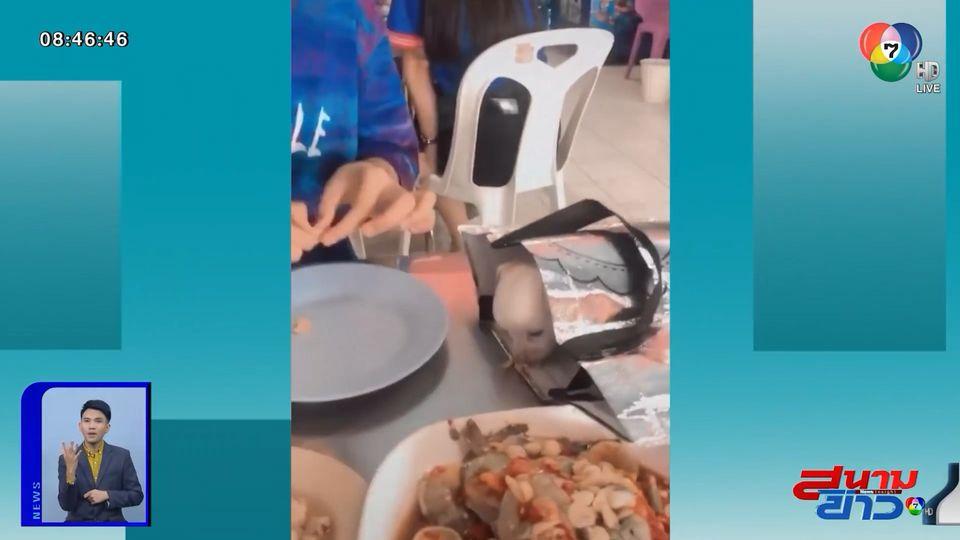 ภาพเป็นข่าว : วิจารณ์หนัก! สาวนำสุนัขเข้าร้านอาหาร ป้อนข้าวบนโต๊ะ