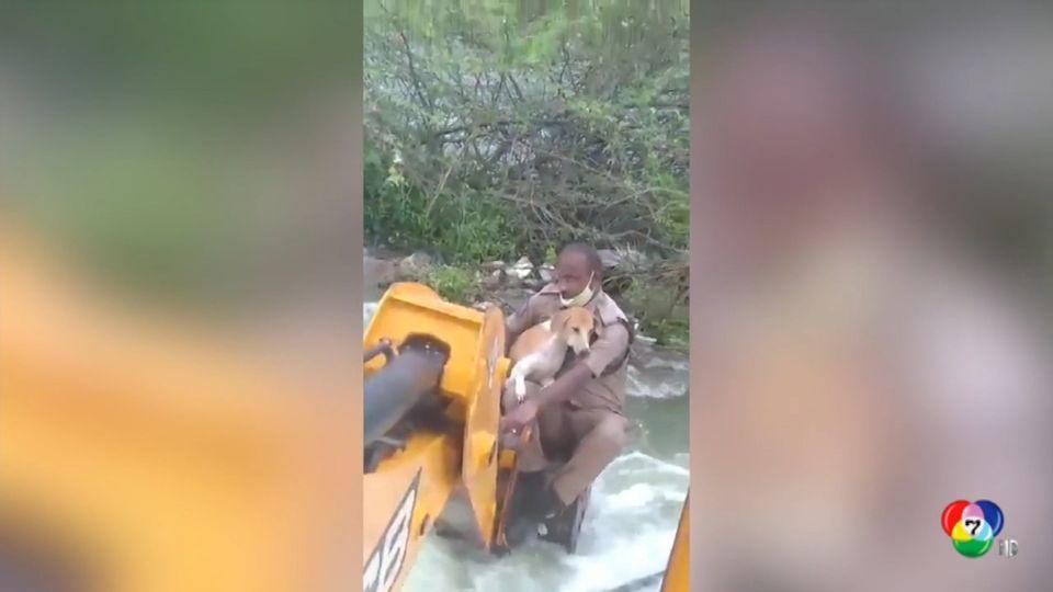 ตำรวจอินเดียใช้รถขุดดินช่วยสุนัขในอ่างเก็บน้ำ