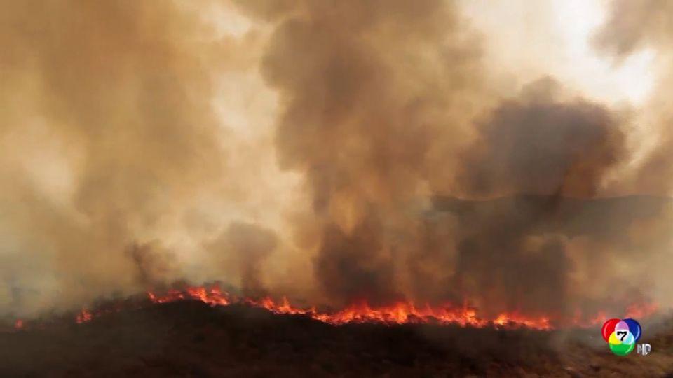 นักวิจัยชี้ภาวะโลกร้อนทำไฟป่ารุนแรงเพิ่มขึ้นถึง 10 เท่า