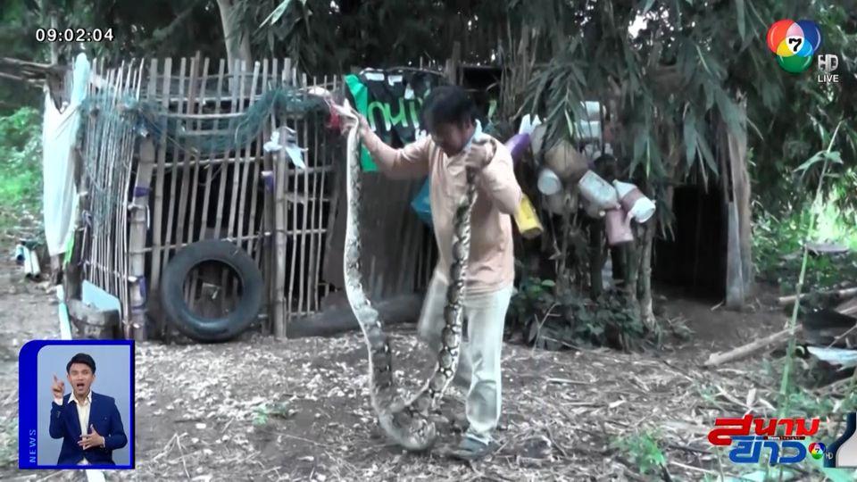 ภาพเป็นข่าว : ห้ามลอกเลียนแบบ! ชาวบ้านโชว์จับงูเหลือม หลังกินไก่ชนยกเล้า