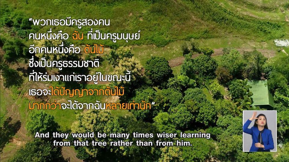 คมธรรมประจำวัน : ครูต้นไม้