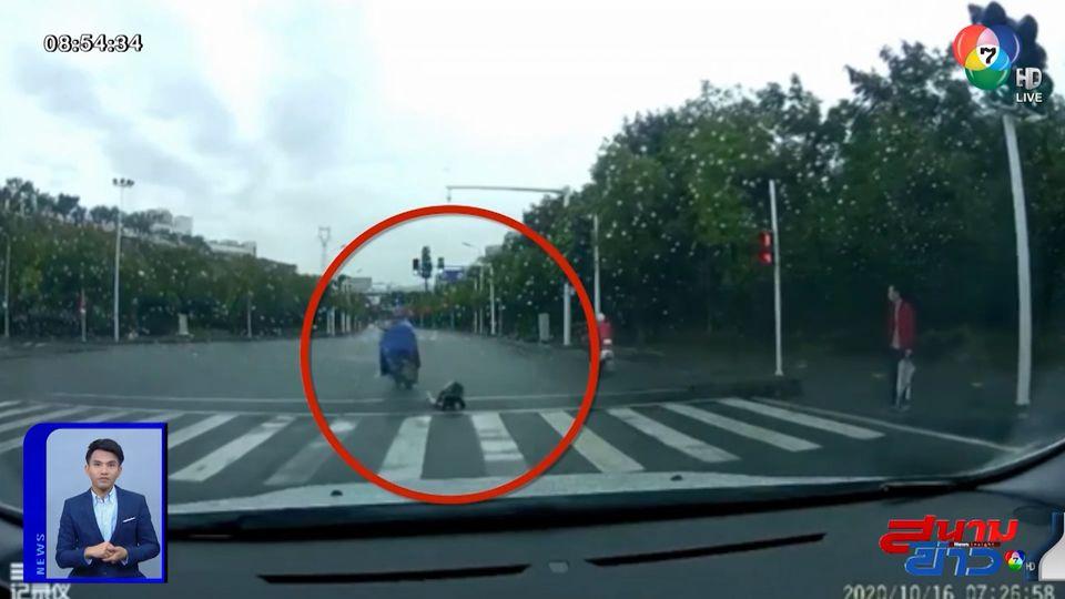ภาพเป็นข่าว : เด็กหญิงเสียหลักตกจากรถ จยย. ถูกผู้ปกครองเตะซ้ำ เพราะคิดว่าปีนลงจากรถ