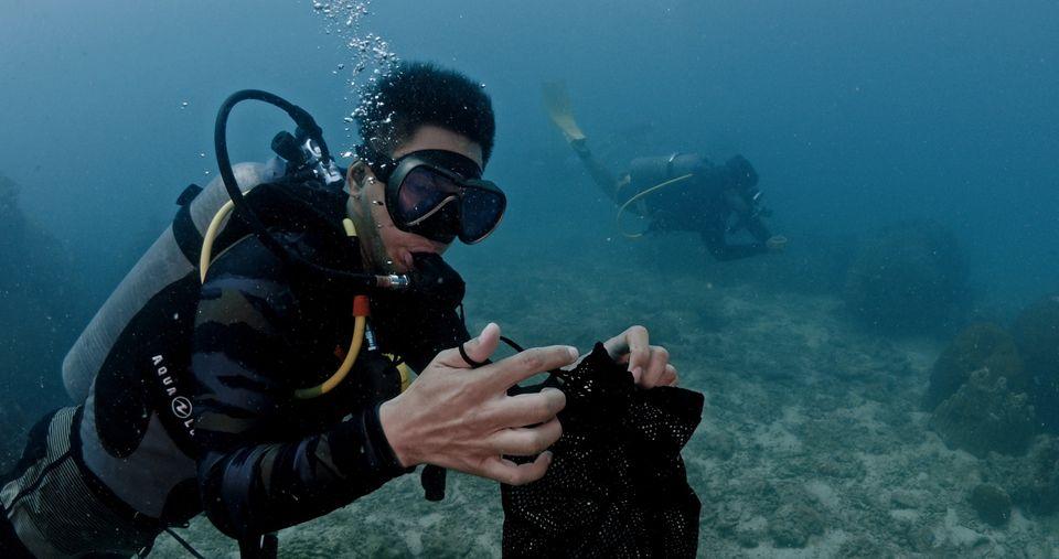 """""""อ๋อม"""" พาทัวร์ ชวนอนุรักษ์โลกใต้น้ำ """"เกาะเต่า"""""""