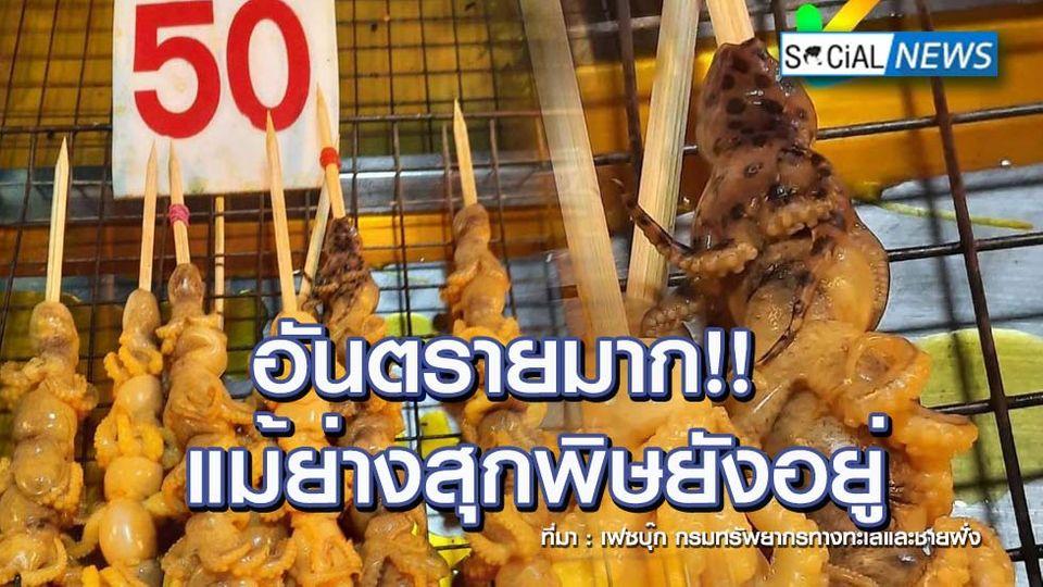 อันตรายมาก! พบแม่ค้านำหมึกบลูริง เสียบไม้ปิ้งขายในตลาดนัด