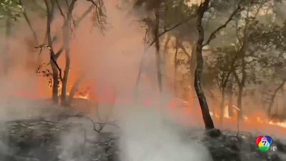 ไฟป่าแคลิฟอร์เนีย ลุกลามทะลุ 10 ล้านไร่