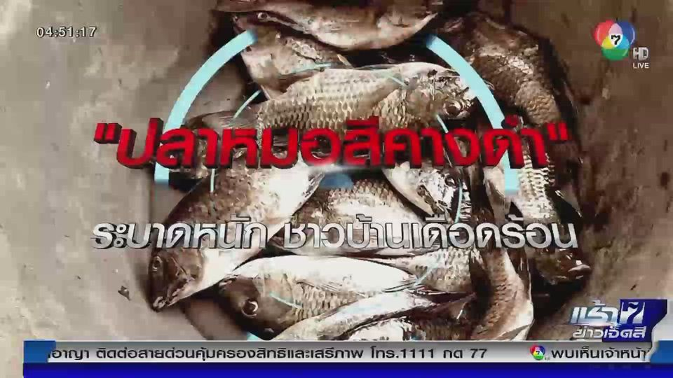 Green Report : ปลาหมอสีคางดำ