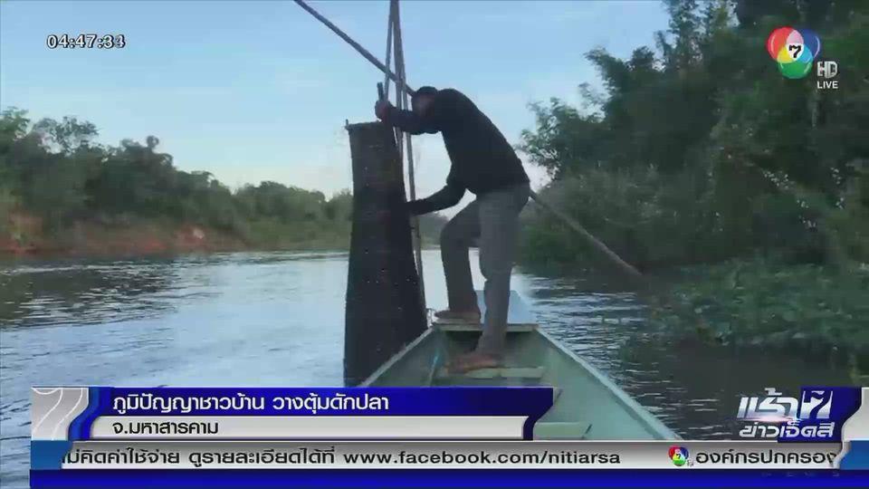 ภูมิปัญญาชาวจังหวัดมหาสารคาม วางตุ้มดักปลา