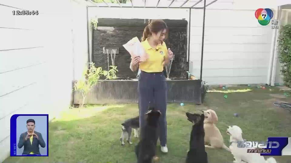 ทำได้ ใช้เป็น : ผู้ฝึกสุนัขรายได้ดี