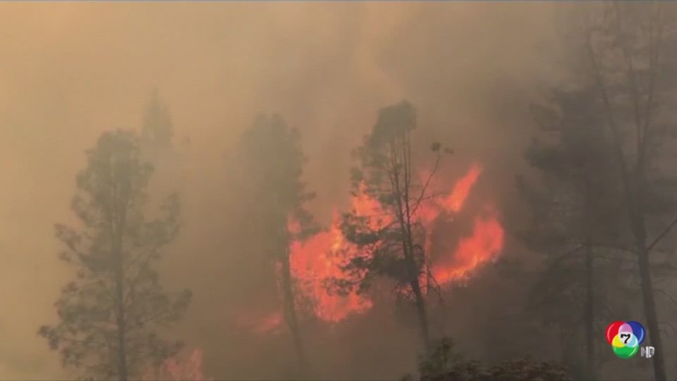 ไฟป่าแคลิฟอร์เนีย ลุกลามหลายล้านไร่ ล่าสุด ทรัมป์ ประกาศภาวะฉุกเฉินแล้ว
