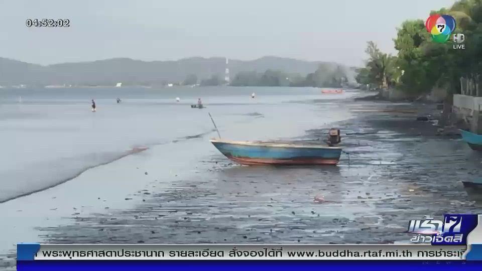Green Report : ข้อสรุปปลิงทะเลลอยเกลื่อนหาด จ.จันทบุรี