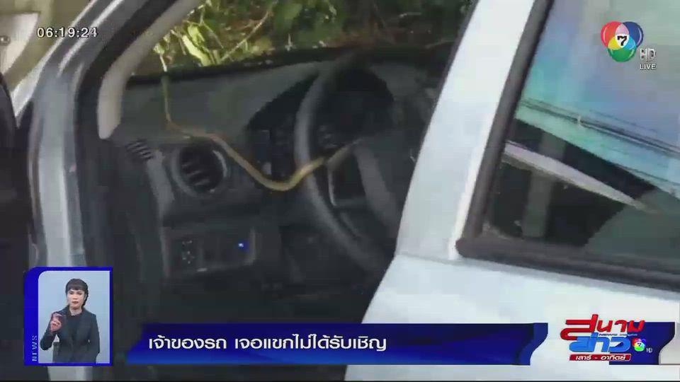 ภาพเป็นข่าว : เจ้าของรถ เจอแขกไม่ได้รับเชิญ