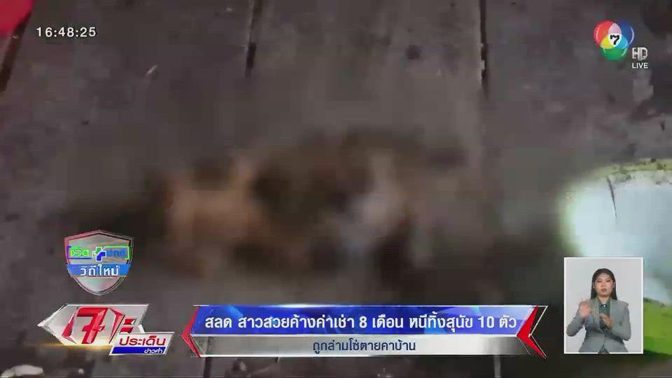 สุดเวทนา! สาวสวยค้างค่าเช่า 8 เดือน หนีทิ้งสุนัข 10 ตัว ถูกล่ามโซ่ตายคาบ้าน