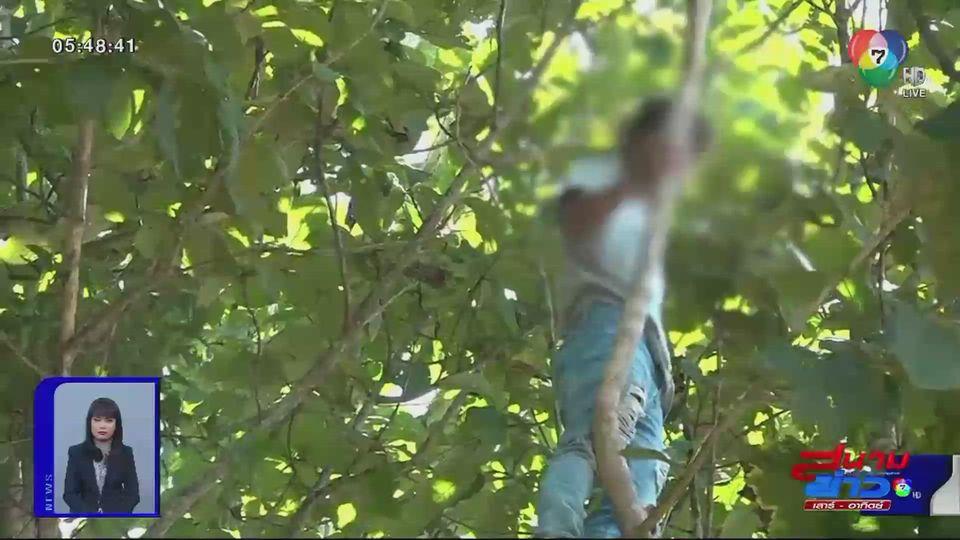 ง้อสาวไม่สำเร็จ ปีนต้นไม้สูงประชดรัก ตกลงมาเจ็บสาหัส