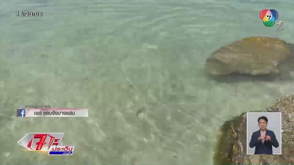 ข่าวอ.เจษฎา ไขข้อสงสัย ภาพทะเลบางแสน น้ำใสราวมัลดีฟส์