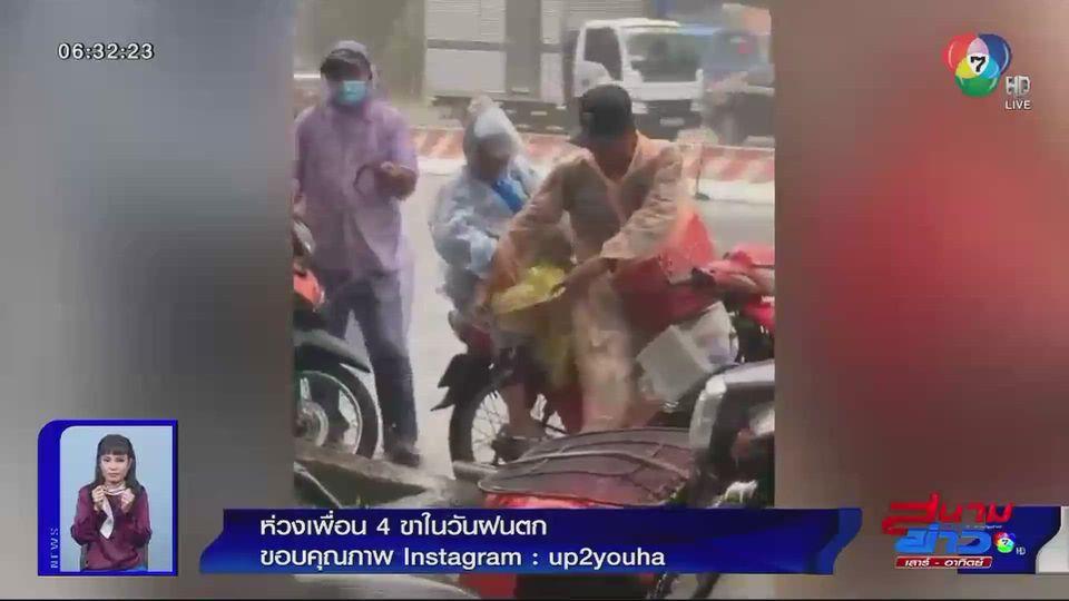 ภาพเป็นข่าว : ห่วงเพื่อน 4 ขา ในวันฝนตก