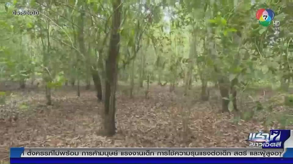 Green Report : ดึงชาวบ้านอาสาพิทักษ์ ดิน-น้ำ-ป่า