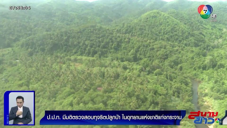 ป.ป.ท.มีมติสอบทุจริตปลูกป่าแก่งกระจาน ปลูกไม่ครอบคลุมตามที่กำหนด