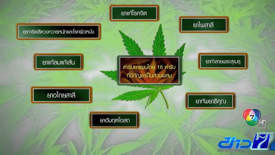 น้ำมันกัญชา อ.เดชา ผ่านการรับรองเป็น 1 ในตำรับยาแผนไทยแล้ว