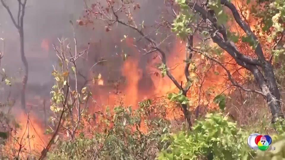 ไฟป่ายังลุกไหม้ในหลายพื้นที่ของบราซิล ปธน.สั่งห้ามเผาป่าเด็ดขาด