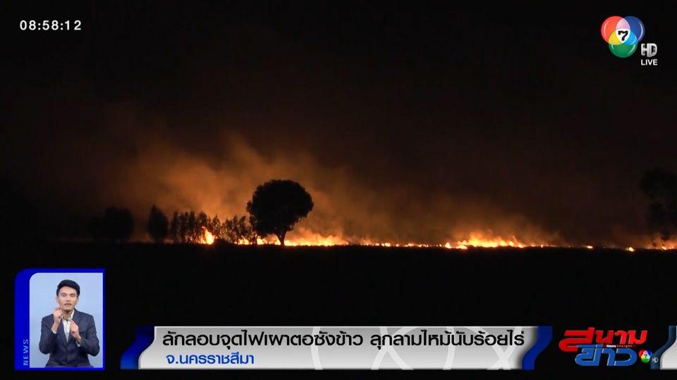 ชาวบ้านลักลอบจุดไฟเผาตอซังข้าว ลุกลามไหม้ป่ายูคาลิปตัสนับร้อยไร่ จ.นครราชสีมา
