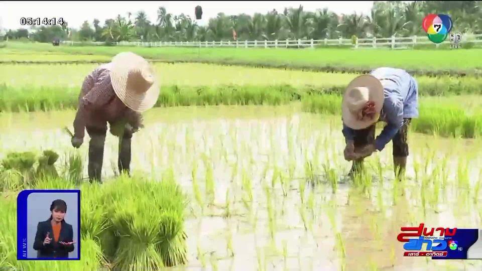 ดึงอาสาสมัครหมู่บ้าน ช่วยเกษตรกรที่เข้าไม่ถึงเทคโนโลยี รับเงินช่วยเหลือจากรัฐบาล เดือนละ 5,000 บาท