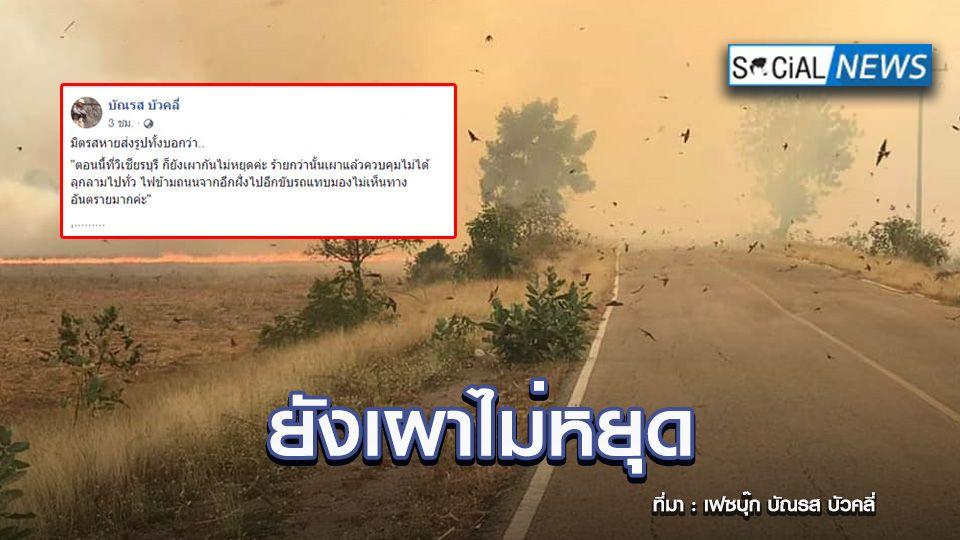 มืดฟ้ามัวดิน! ภาพชาวบ้านเผาไร่อ้อยไฟลุกลามทั่ว ไม่หวั่น PM2.5 พุ่งสูง