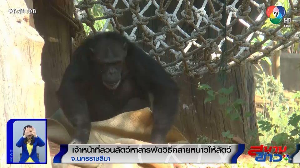 ภาพเป็นข่าว : เจ้าหน้าที่สวนสัตว์หาสารพัดวิธีคลายหนาวให้สัตว์