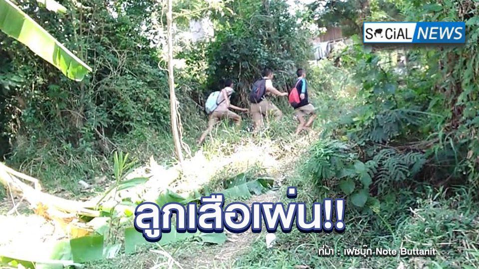 ขำกลิ้ง! คลิป 3 ลูกเสือวิ่งป่าราบกลับโรงเรียน หลังเจอครูทัก พากันไปไหน