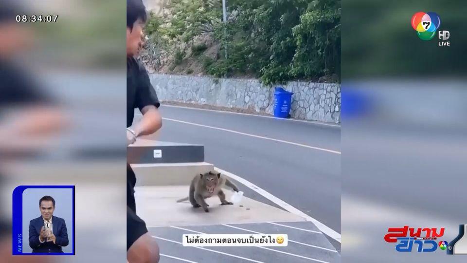 ภาพเป็นข่าว : มวยคู่เอก! หนุ่มออกลีลามวยไทยยั่วยวนลิง สุดท้ายจบไม่สวย