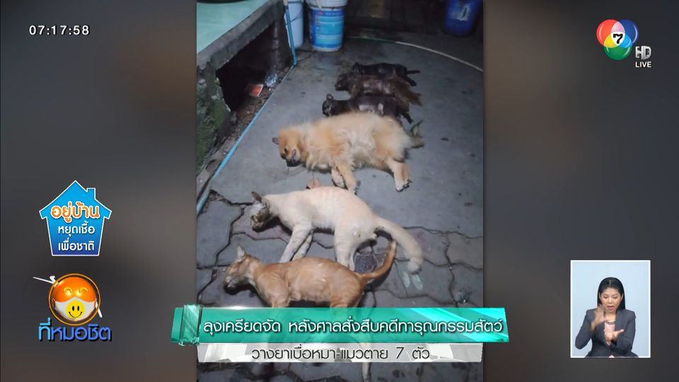 ลุงเครียดจัด! หลังศาลสั่งสืบคดีทารุณกรรมสัตว์ วางยาเบื่อหมา-แมวตาย 7 ตัว