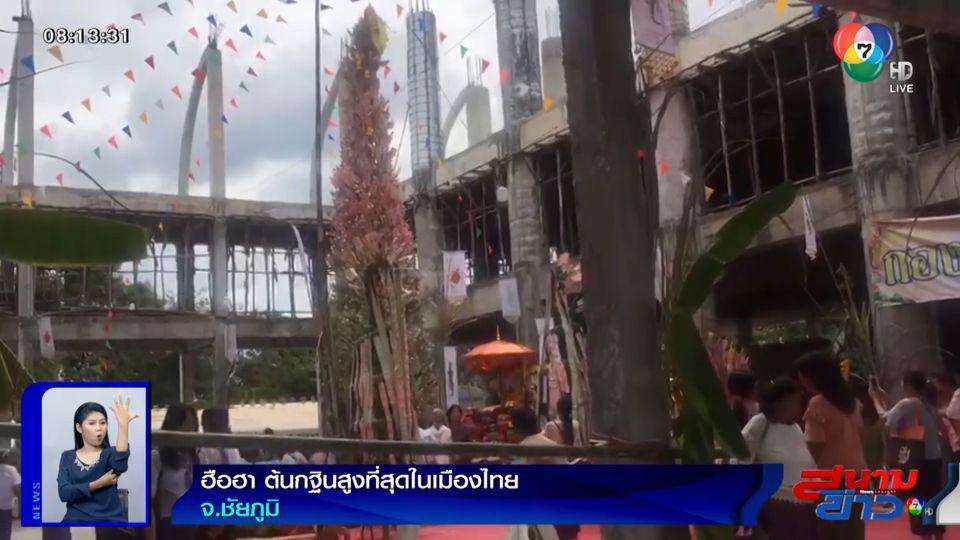 ภาพเป็นข่าว : ฮือฮา! ต้นกฐินสูงที่สุดในเมืองไทย จ.ชัยภูมิ
