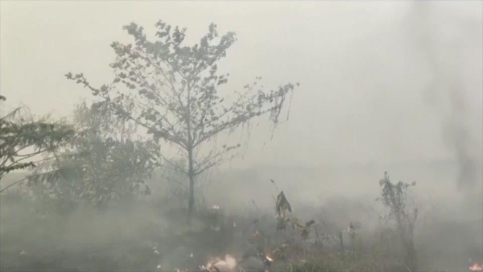 อินโดฯ ประกาศหยุดโรงเรียนบนเกาะสุมาตรา จากปัญหาหมอกควันพิษ