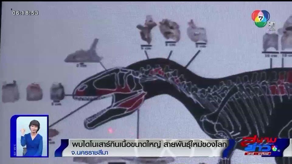 ภาพเป็นข่าว : โคราชค้นพบไดโนเสาร์กินเนื้อขนาดใหญ่ สายพันธุ์ใหม่ของโลก