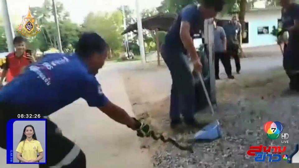 ภาพเป็นข่าว : วงแตก! กู้ภัยตกใจถูกงูรัดมือ วิ่งหนี-ร้องกรี๊ดลั่น