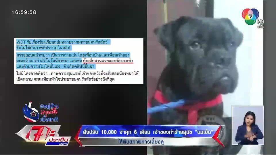 ศาลชลบุรี สั่งปรับ 1 หมื่น จำคุก 6 เดือน เจ้าของทำร้ายสุนัข นมเย็น ให้พ้นสภาพการเลี้ยงดู