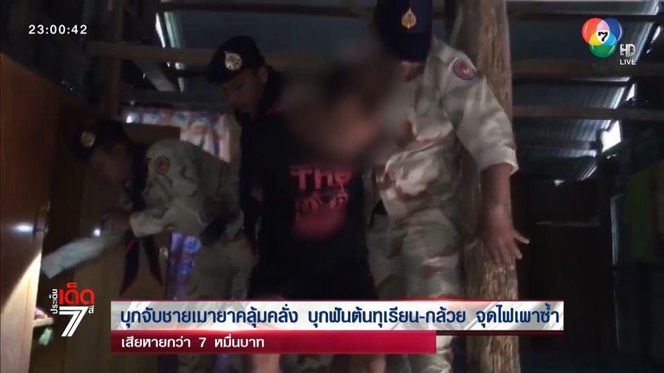 บุกจับชายเมายาคลุ้มคลั่ง บุกฟันต้นทุเรียน-กล้วย จุดไฟเผาซ้ำ เสียหายกว่า 7 หมื่นบาท