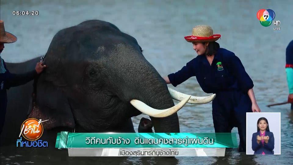 วิถีคนกับช้าง ดินแดนคชสารคู่แผ่นดิน เมืองสุรินทร์ถิ่นช้างไทย