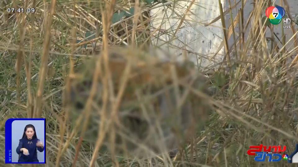 รายงานพิเศษ : คลี่ปมฆ่าทุบศีรษะพระ ทิ้งศพในพงหญ้า จ.ขอนแก่น