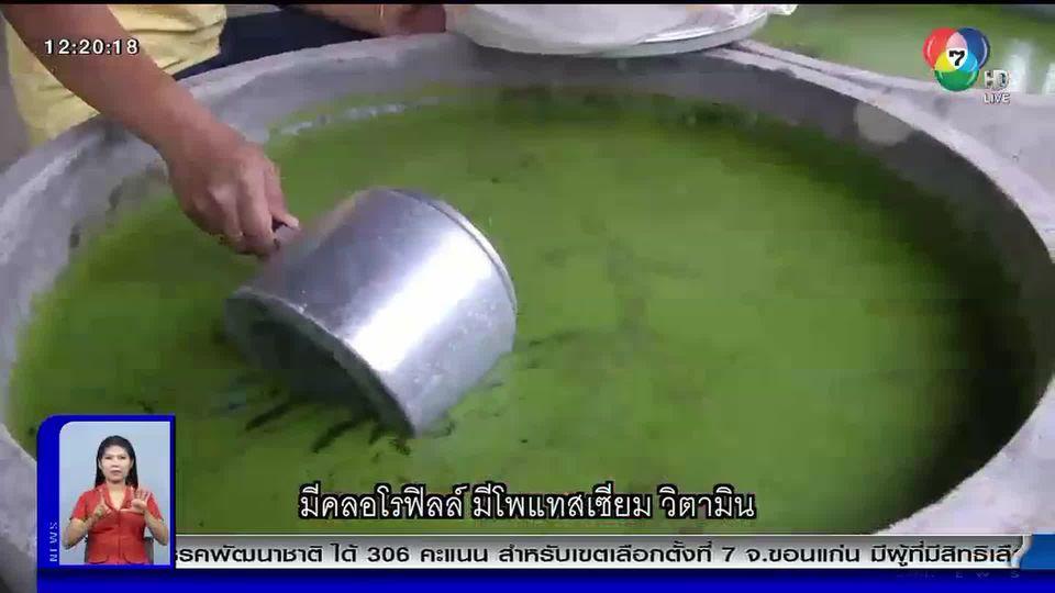 100 ข่าวเล่าเรื่อง : อาหารผสมไข่ผำ เพื่อสุขภาพ จากไร่แสงสกุลรุ่ง จ.กาญจนบุรี