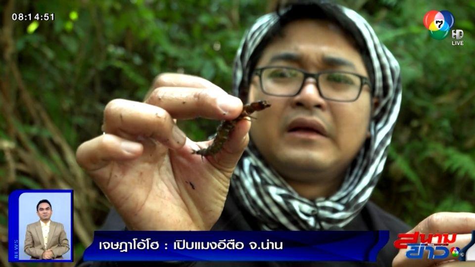 เจษฎาโอ้โฮ : เปิบแมงอีตือ อ.บ่อเกลือ จ.น่าน