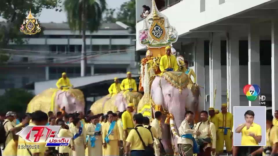 รายงานพิเศษ : ยิ่งใหญ่ ช้าง 11 เชือก เดินขบวน คชสารคู่แผ่นดินเทิดไท้องค์ราชัน