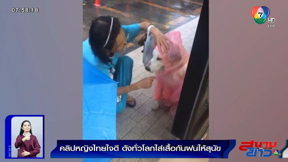 ภาพเป็นข่าว : ภาพประทับใจ หญิงไทยใจดีใส่เสื้อกันฝนให้สุนัขจรจัด